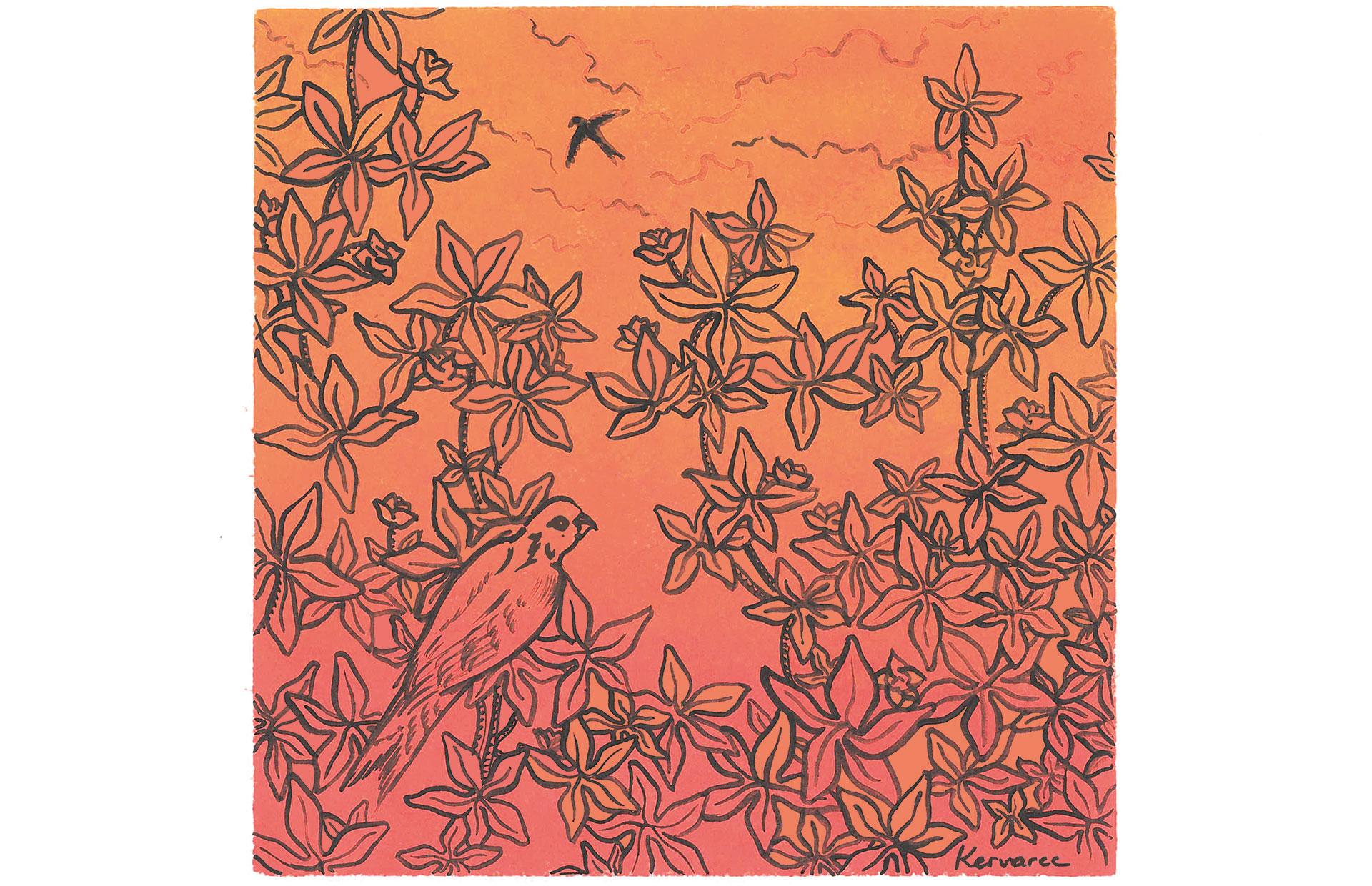 Oiseau sur fond orange, Anne Kervarec artiste peintre Nantes