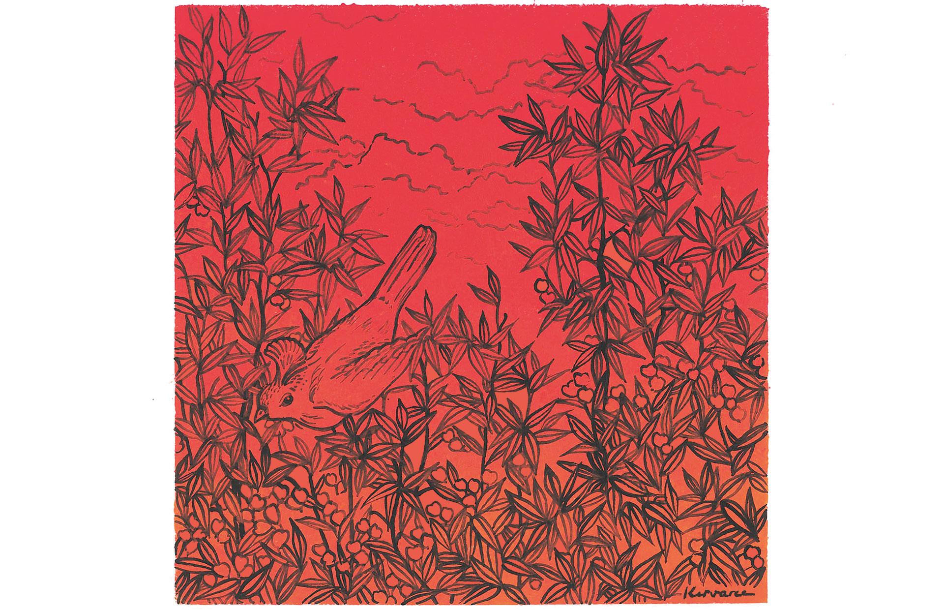Oiseau sur fond rouge, Anne Kervarec artiste peintre Nantes
