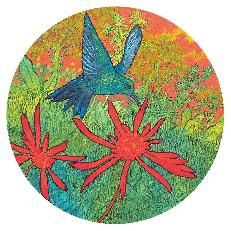 Colibri butinant, Anne Kervarec artiste peintre